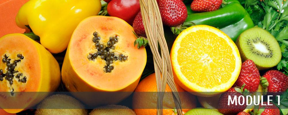 Module 1: Foods that Get Rid of Cellulite