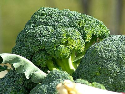 Use Super Foods as Part of Your Cellulite Diet